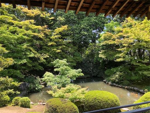 随心院の庭園の新緑がとても美しい