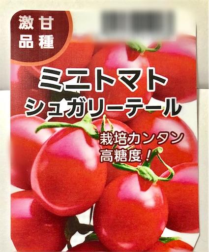 高糖度ミニトマト シュガリーテール