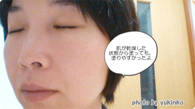 f:id:cosme100:20141201071447j:image