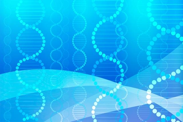 幹細胞コスメ・ランキング・おすすめ・効果