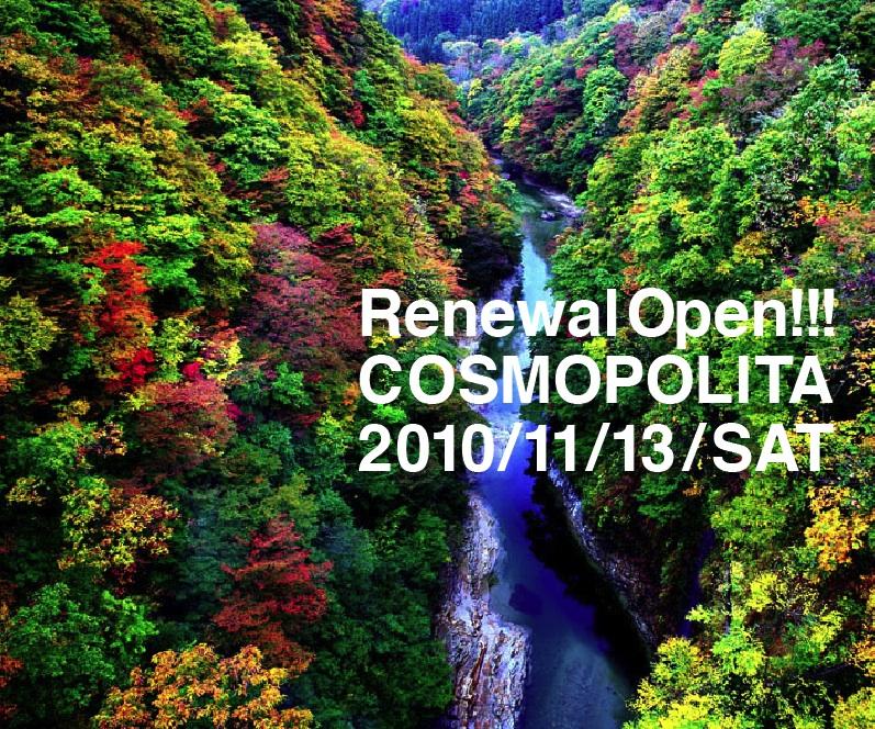 f:id:cosmopark:20101108113916j:image