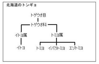 f:id:costep-miura:20060715044254j:image