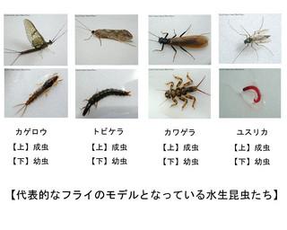 f:id:costep-miura:20060927174619j:image