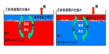 f:id:costep-miura:20070303050919j:image