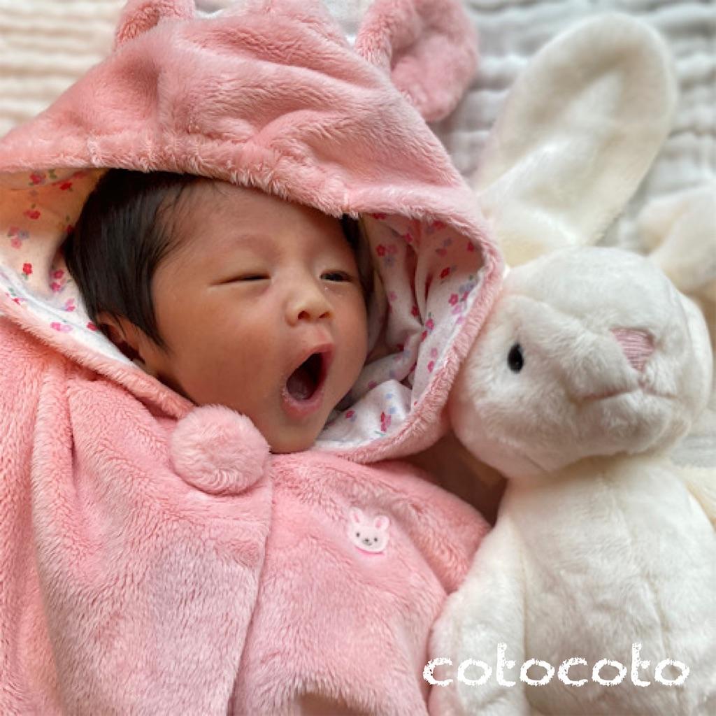 f:id:cotocoto_blog:20201022173856j:image