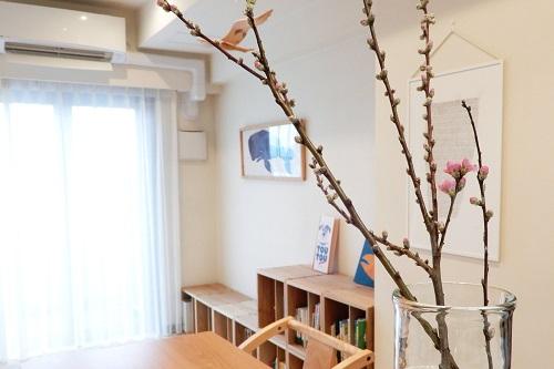 桃の節句に桃の花