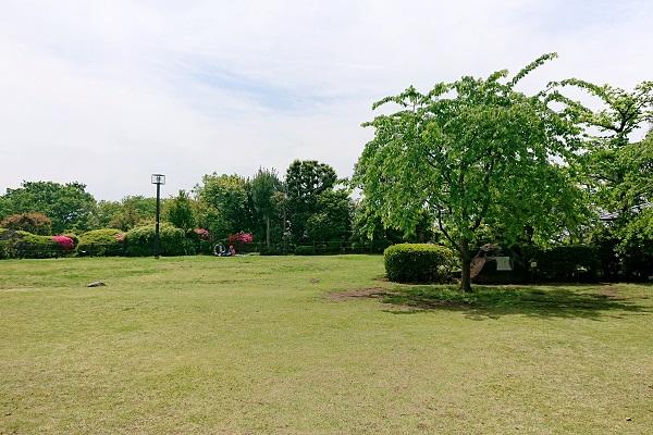 f:id:cotosumu:20190508233834j:plain