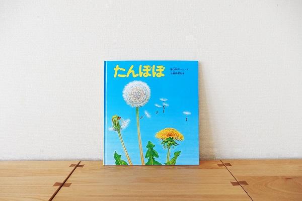 f:id:cotosumu:20190520160428j:plain