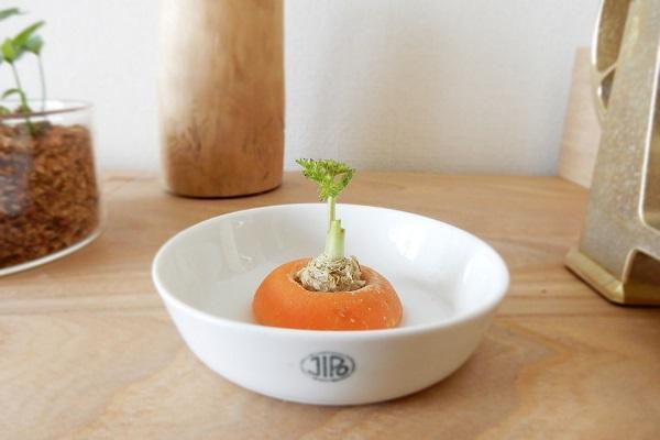 人参の再生野菜