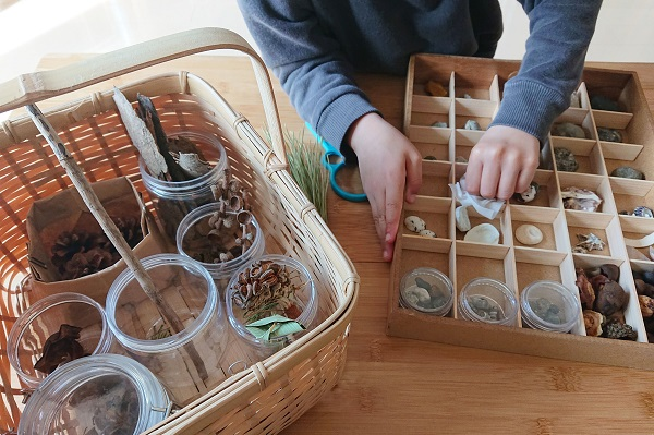 コレクションボックスの整理と掃除