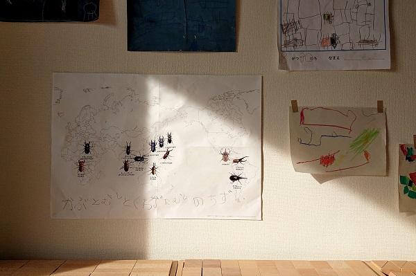 子どもと世界のカブトムシ分布図作り