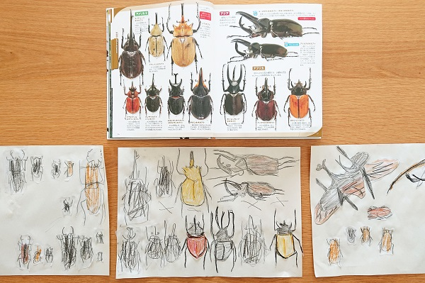 昆虫図鑑をトレース