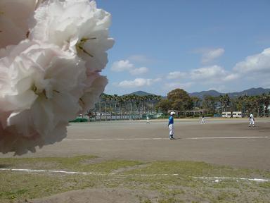 f:id:cotton1010:20100410104251j:image:w320,h240