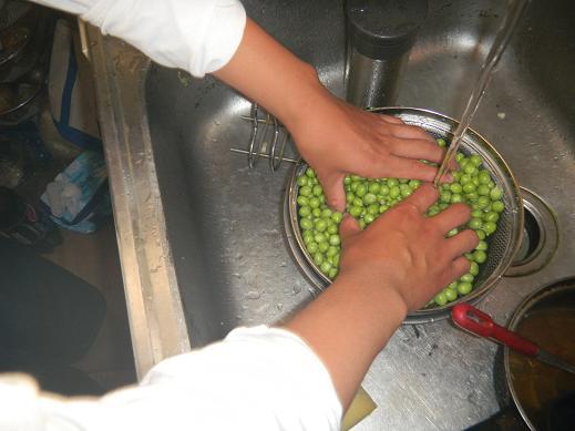f:id:cotton1010:20110522174132j:image:w360