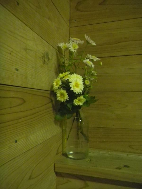 f:id:cotton1010:20121110221124j:image:h360,w280