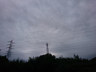 f:id:cotton1010:20191016054922j:plain