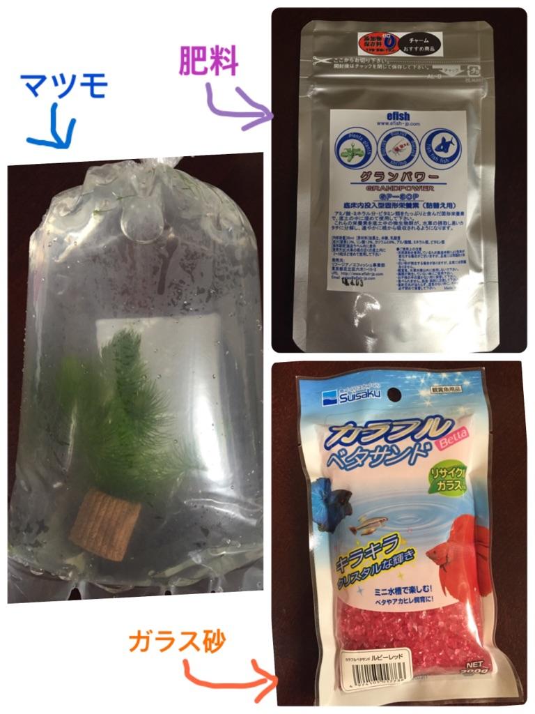 マツモ・ガラス砂・肥料