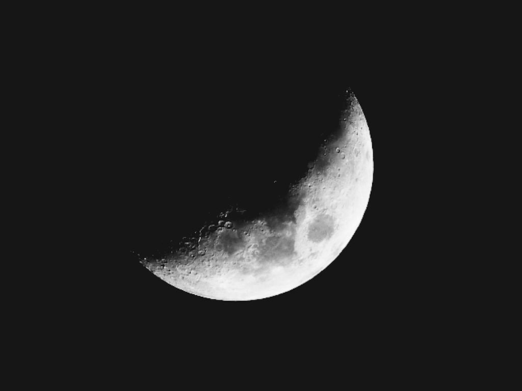 f:id:crescentmoon117:20210418074514p:image