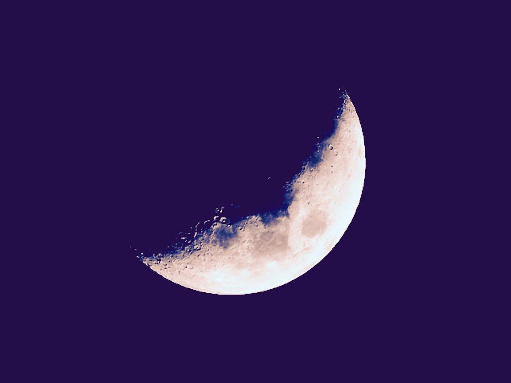 f:id:crescentmoon117:20210418074609p:image