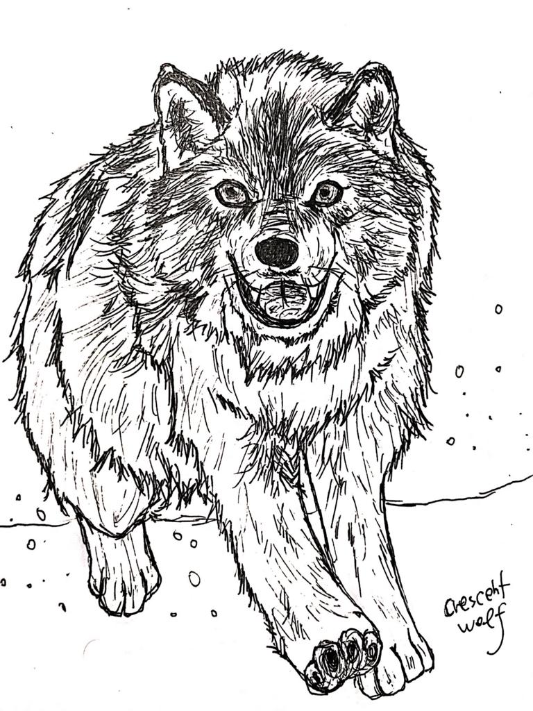 f:id:crescentwolf:20171007005455j:plain