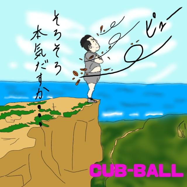 f:id:cub-ball:20200613141650j:image