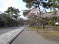 廣隆寺3_京都