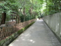 撮影地:鶴岡八幡宮