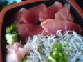 マグロとシラスの2色丼@相模亭(横須賀市長井)