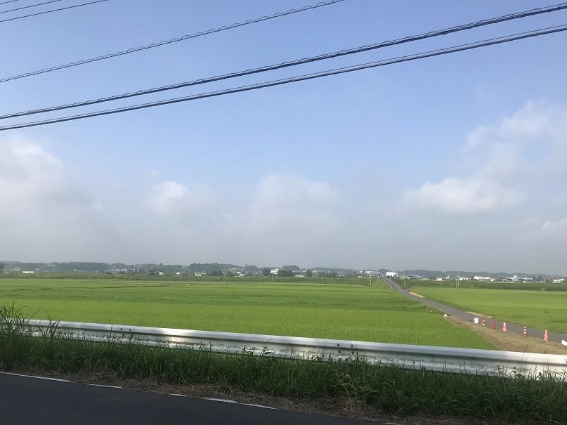 f:id:currysenpaisukisuki:20180716181123j:plain