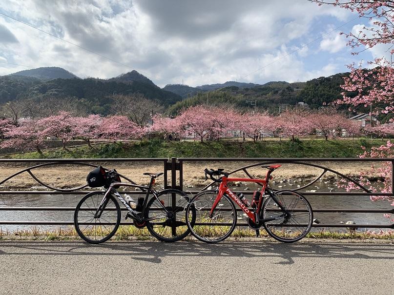 f:id:currysenpaisukisuki:20190219163604j:plain