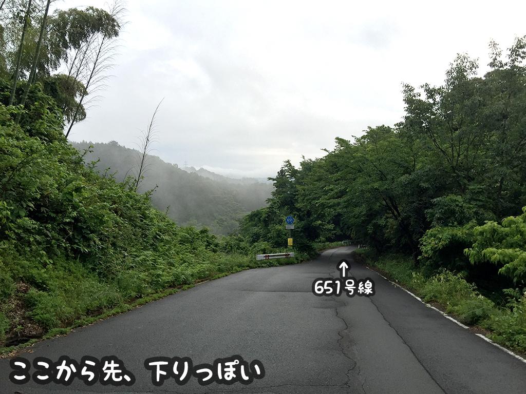 f:id:curuhamu:20160609000245j:plain