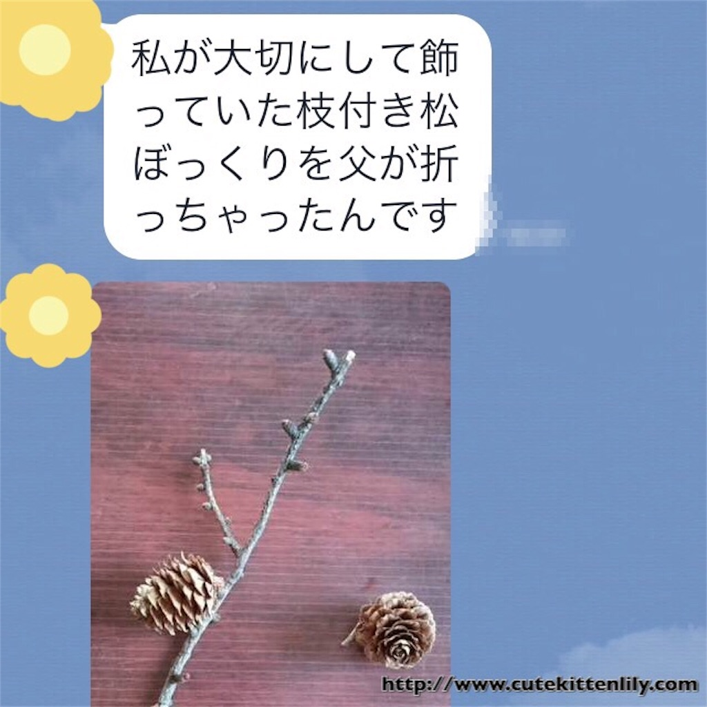 f:id:cutekitten03:20170107160057j:image