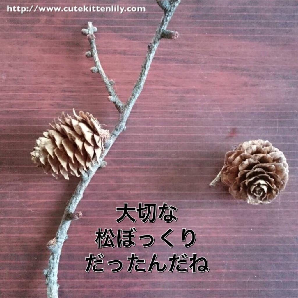 f:id:cutekitten03:20170107162116j:image