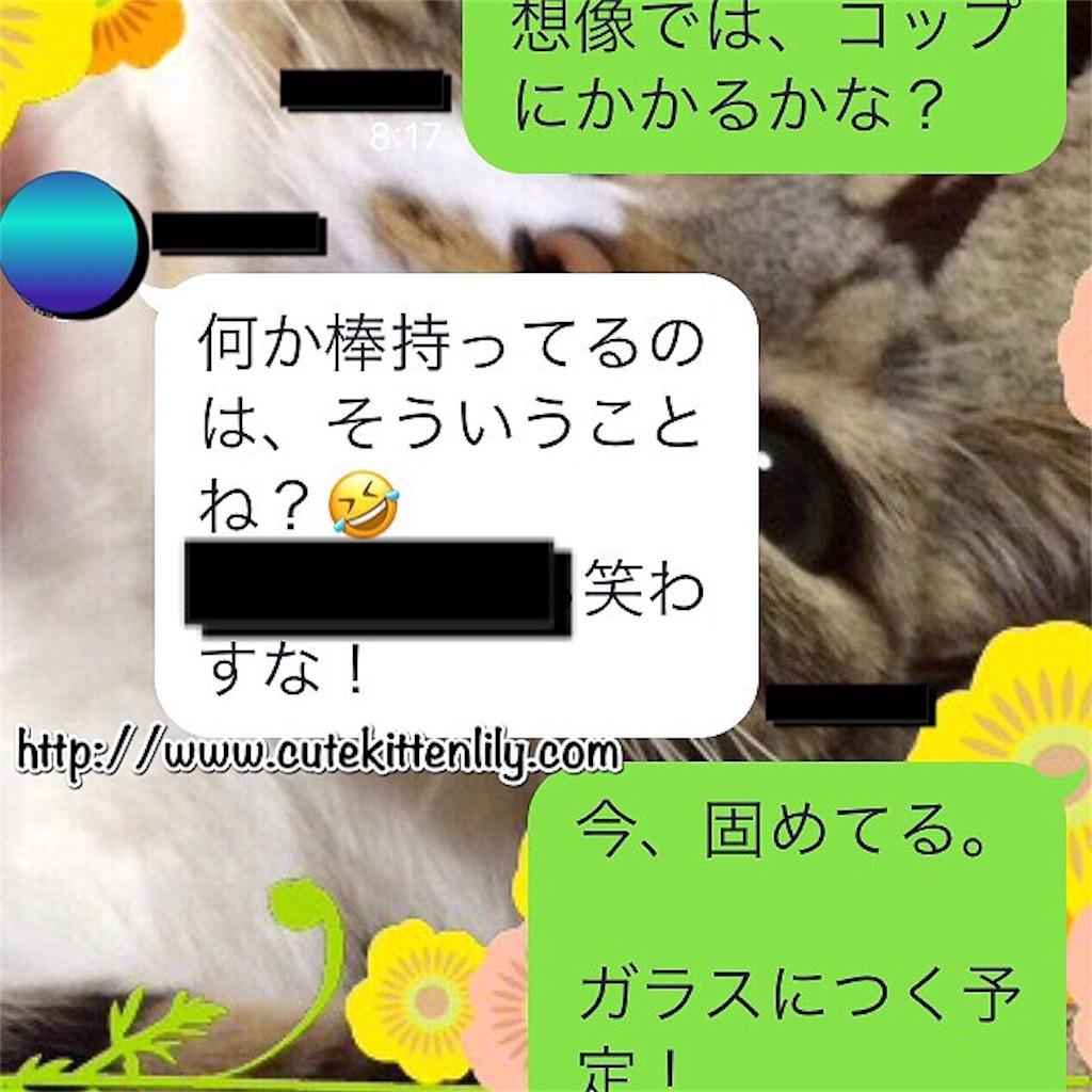 f:id:cutekitten03:20170606183244j:image