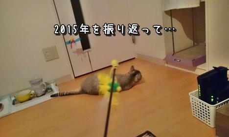 f:id:cuthouseneco:20151230011408j:plain