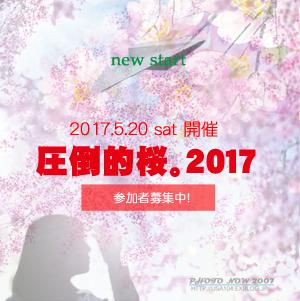f:id:cyakomomomama:20170515132104j:plain
