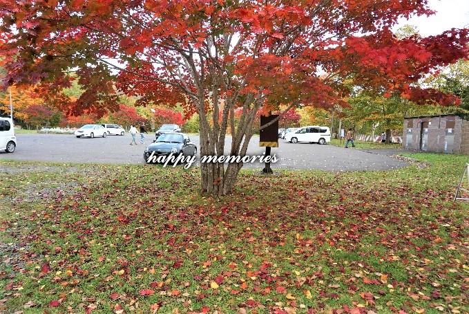 f:id:cyakomomomama:20171010150552j:plain
