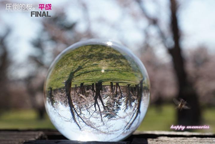f:id:cyakomomomama:20190517233733j:plain