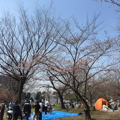 f:id:cycland_nakazawa:20170330172227j:plain