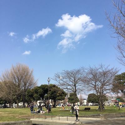 f:id:cycland_nakazawa:20170331182845j:plain