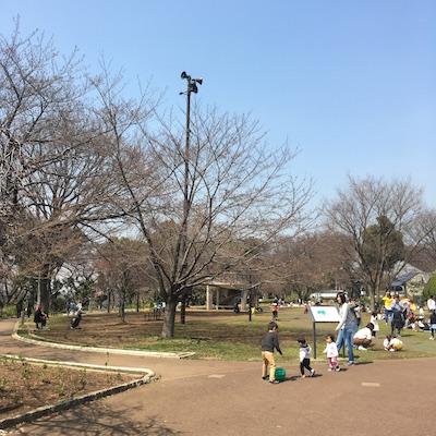 f:id:cycland_nakazawa:20170331183105j:plain