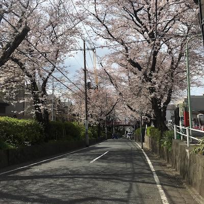f:id:cycland_nakazawa:20170406185410j:plain