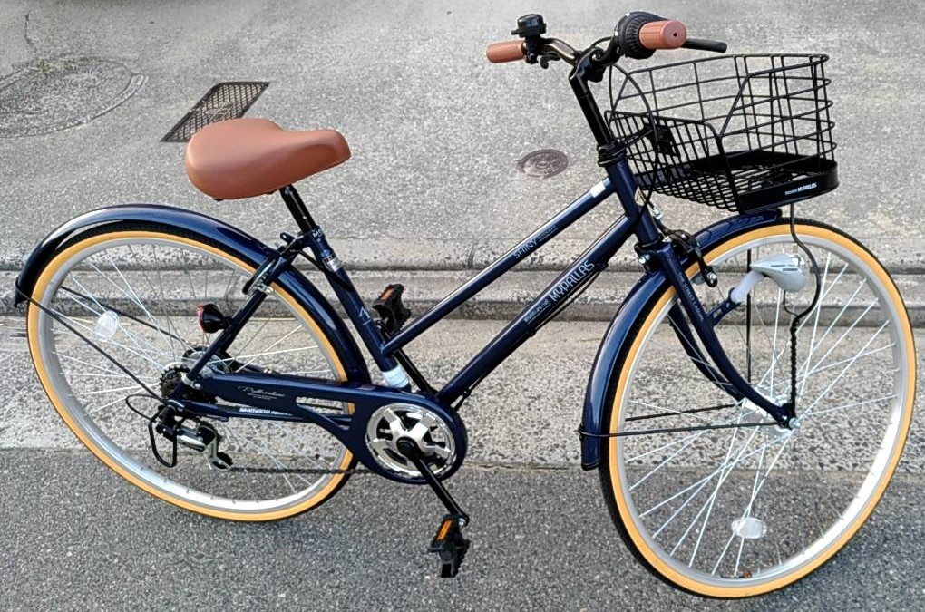 f:id:cycle_piyo:20190310040454j:plain
