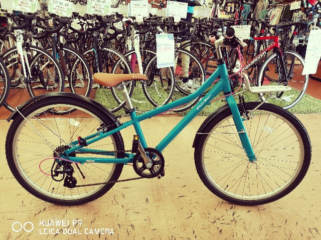 f:id:cycleshophodaka:20170506100544j:image