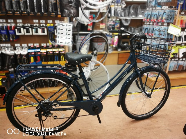 f:id:cycleshophodaka:20190312120913j:image
