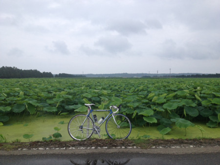 f:id:cyclist_matta:20150622133335j:plain