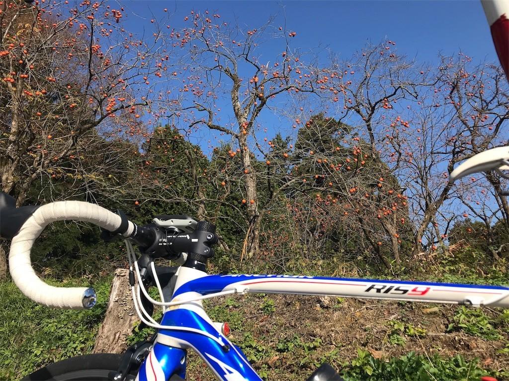 f:id:cyclist_matta:20181126101052j:image
