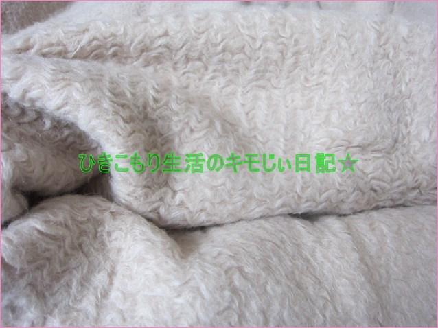 f:id:cyicyi-japan:20200624104657j:plain