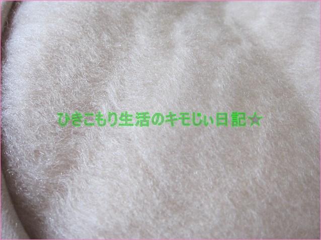 f:id:cyicyi-japan:20200624104902j:plain