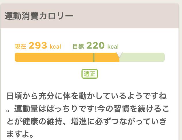 f:id:cyu-ko:20171121204005p:plain
